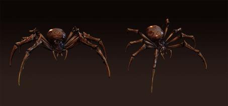spider_comp_01