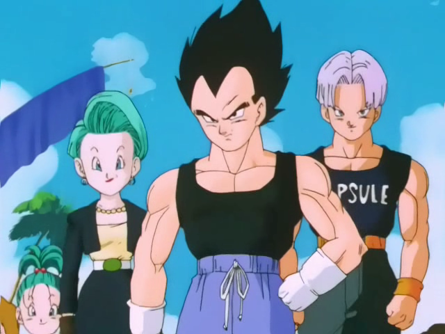 Vegeta Bulma Trunks