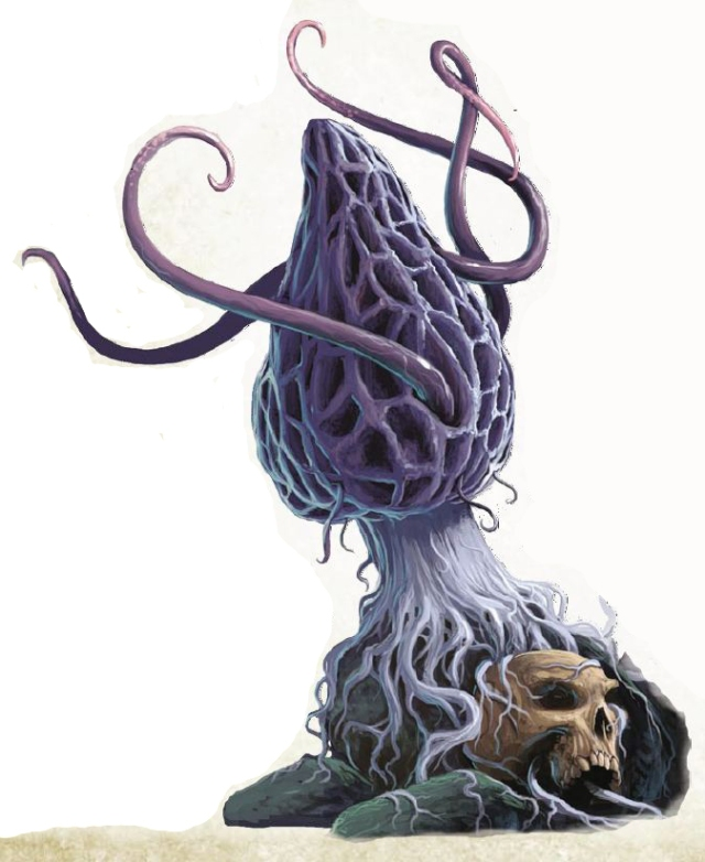 32-violet_fungus