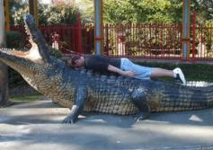 bad_planking_idea_by_tigerprincesskaitlyn-d41druw