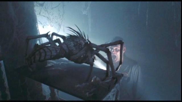 Jim+Spider