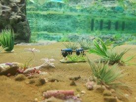 Miniature Wunderland 70