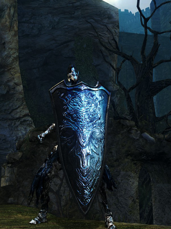 Top 10 Shields