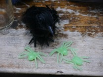 Our little bird friend had to fend off plenty of glow in the dark spiders.