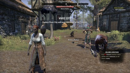 The Elder Scrolls Online 16