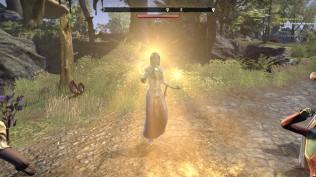 The Elder Scrolls Online 21