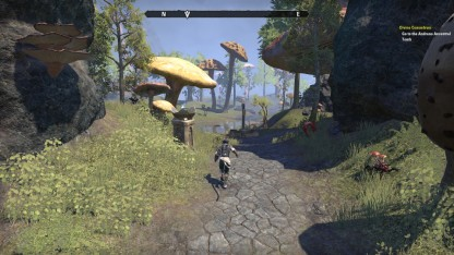 The Elder Scrolls Online 22