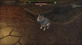 The Elder Scrolls Online 28