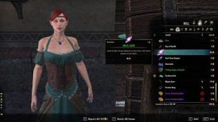 The Elder Scrolls Online 29