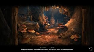 The Elder Scrolls Online 43