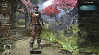 The Elder Scrolls Online 45