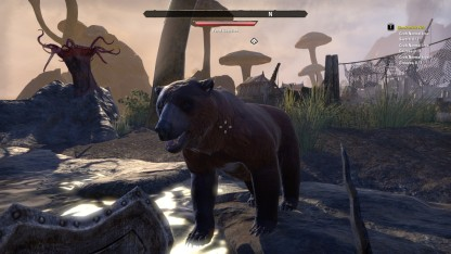 The Elder Scrolls Online 48