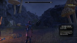 The Elder Scrolls Online 51