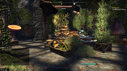The Elder Scrolls Online 55
