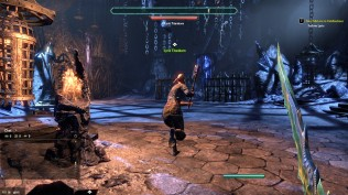 The Elder Scrolls Online 65