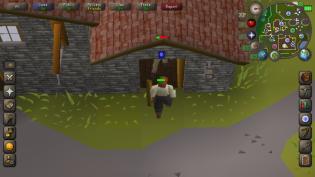 OSRS Mobile 12