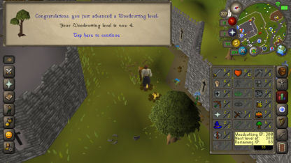 OSRS Mobile 13