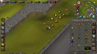 OSRS Mobile 18