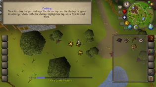 OSRS Mobile 4