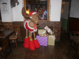 The reindeer returned! It's truly a beautiful reindeer.