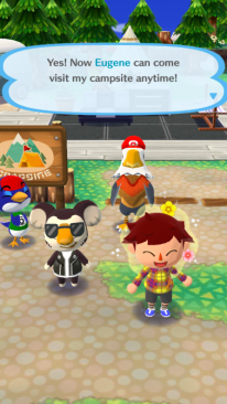 Pocket Camp 14