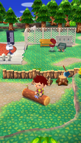 Pocket Camp 4