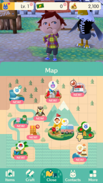 Pocket Camp 8